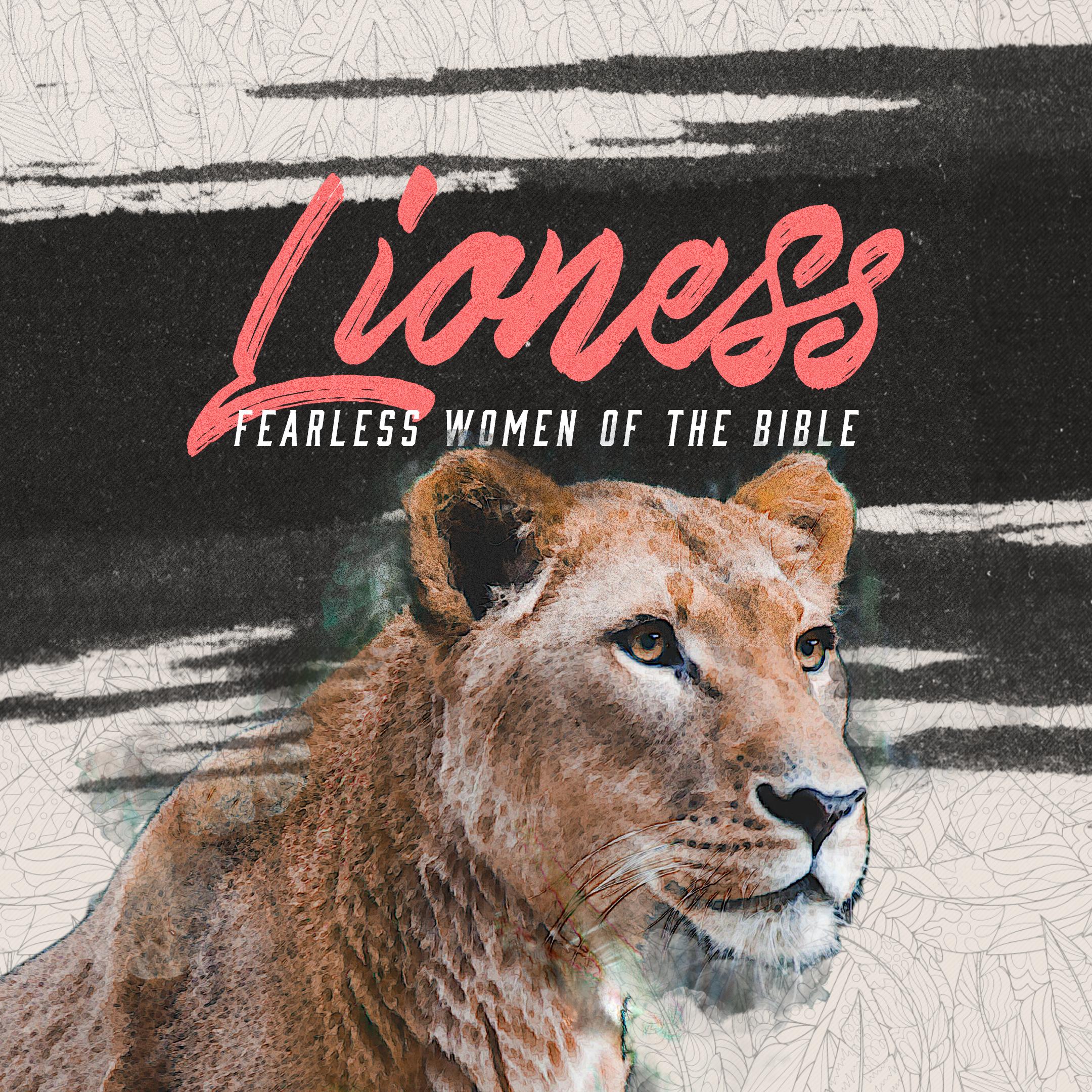 Lioness: Week 2