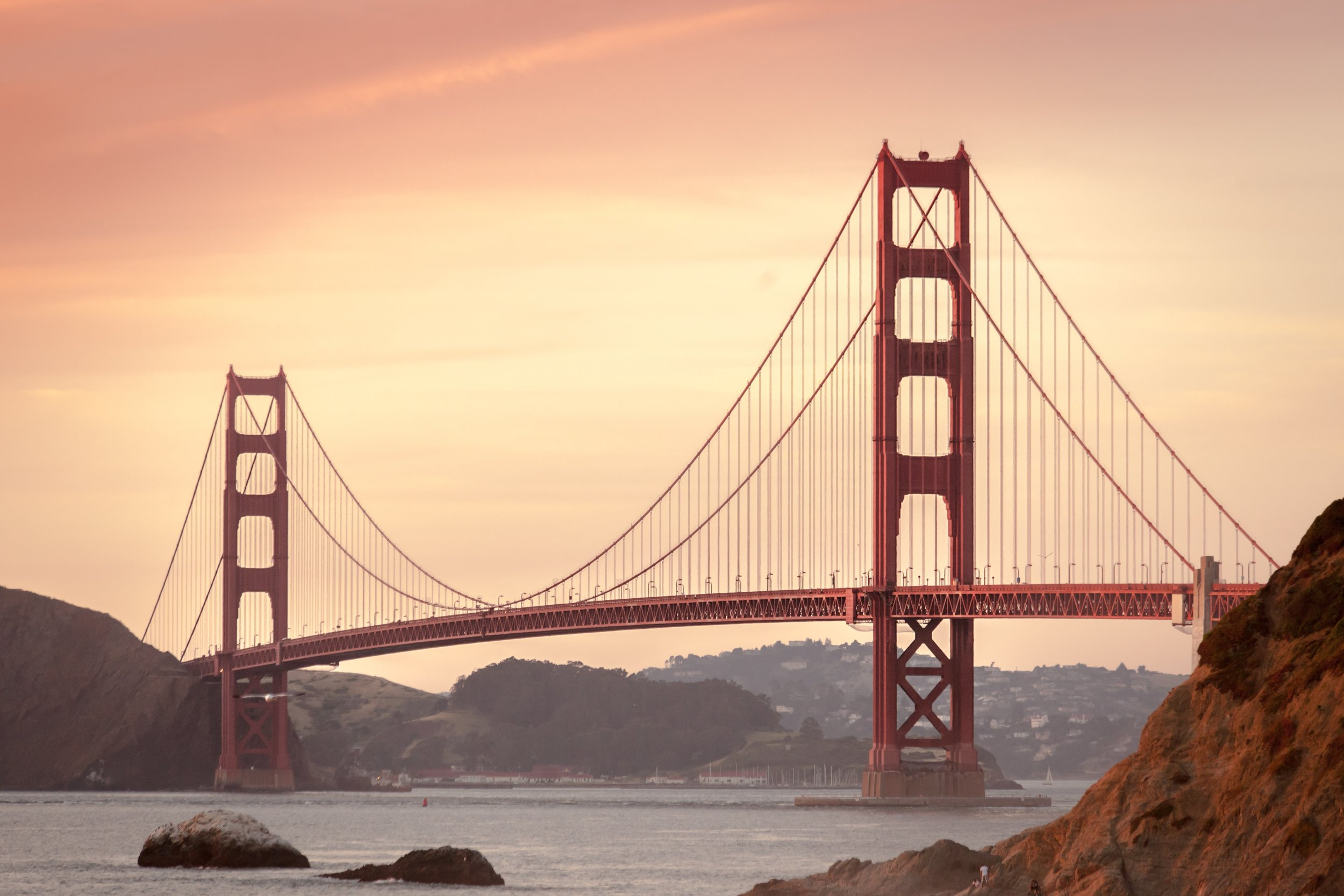 Did you know a special bacteria was found right here in San Francisco? -