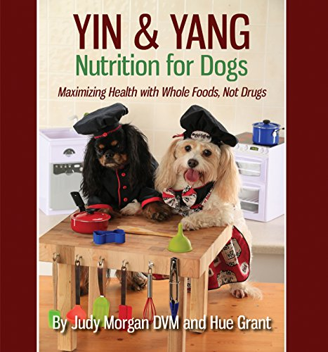 book-cover-yin-and-yang.jpg