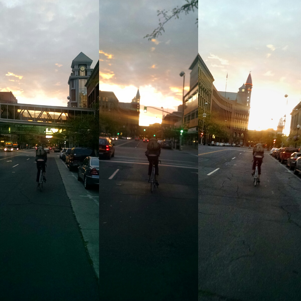 temp_squared_picture-1.jpg