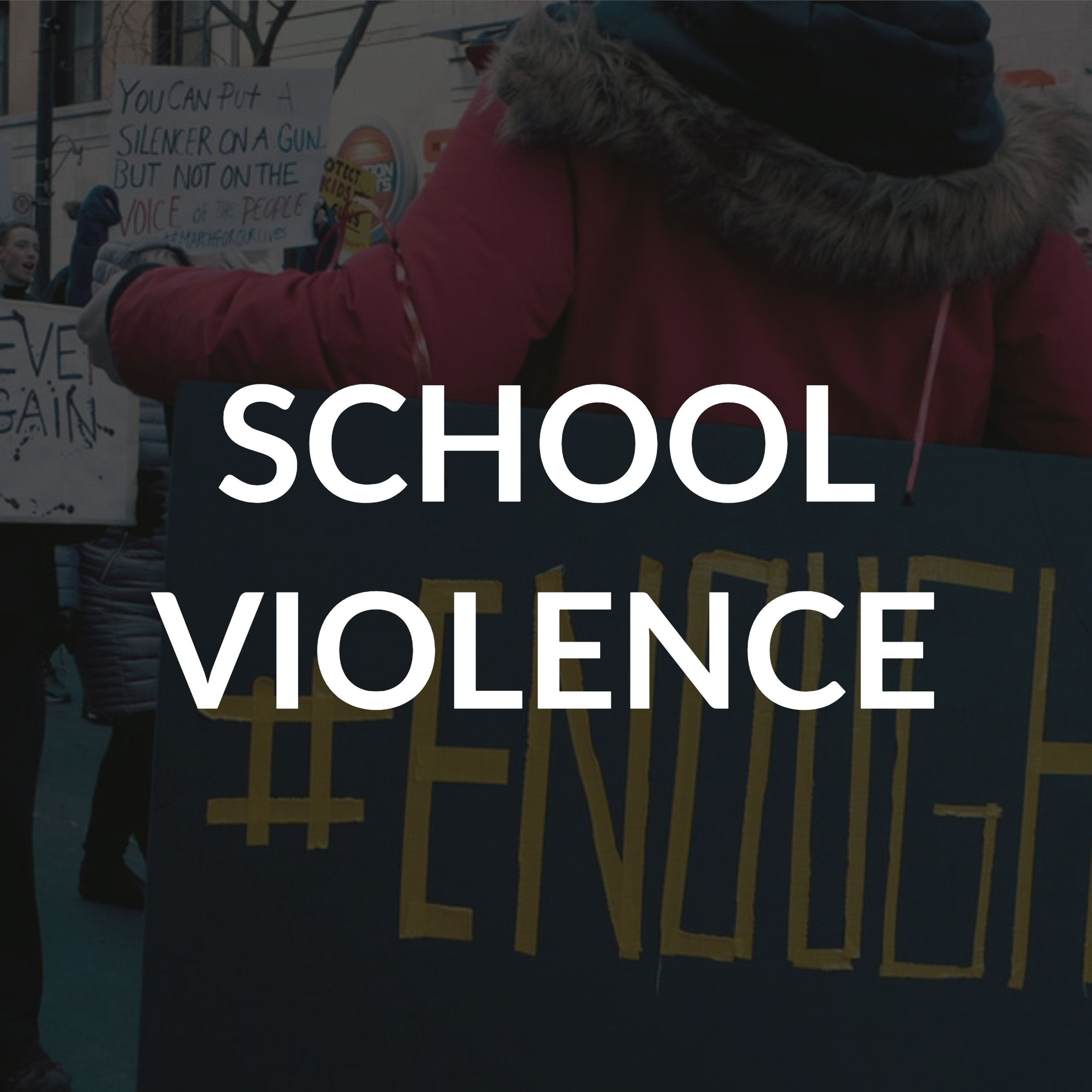 Children should feel safe when they go to school. My family background in education has taught me that children don't learn well in a fortress. I support confronting the school violence epidemic by creating red flag protective orders, expanding background checks for the purchase of firearms, and educating firearm owners about the importance of responsible gun ownership habits.
