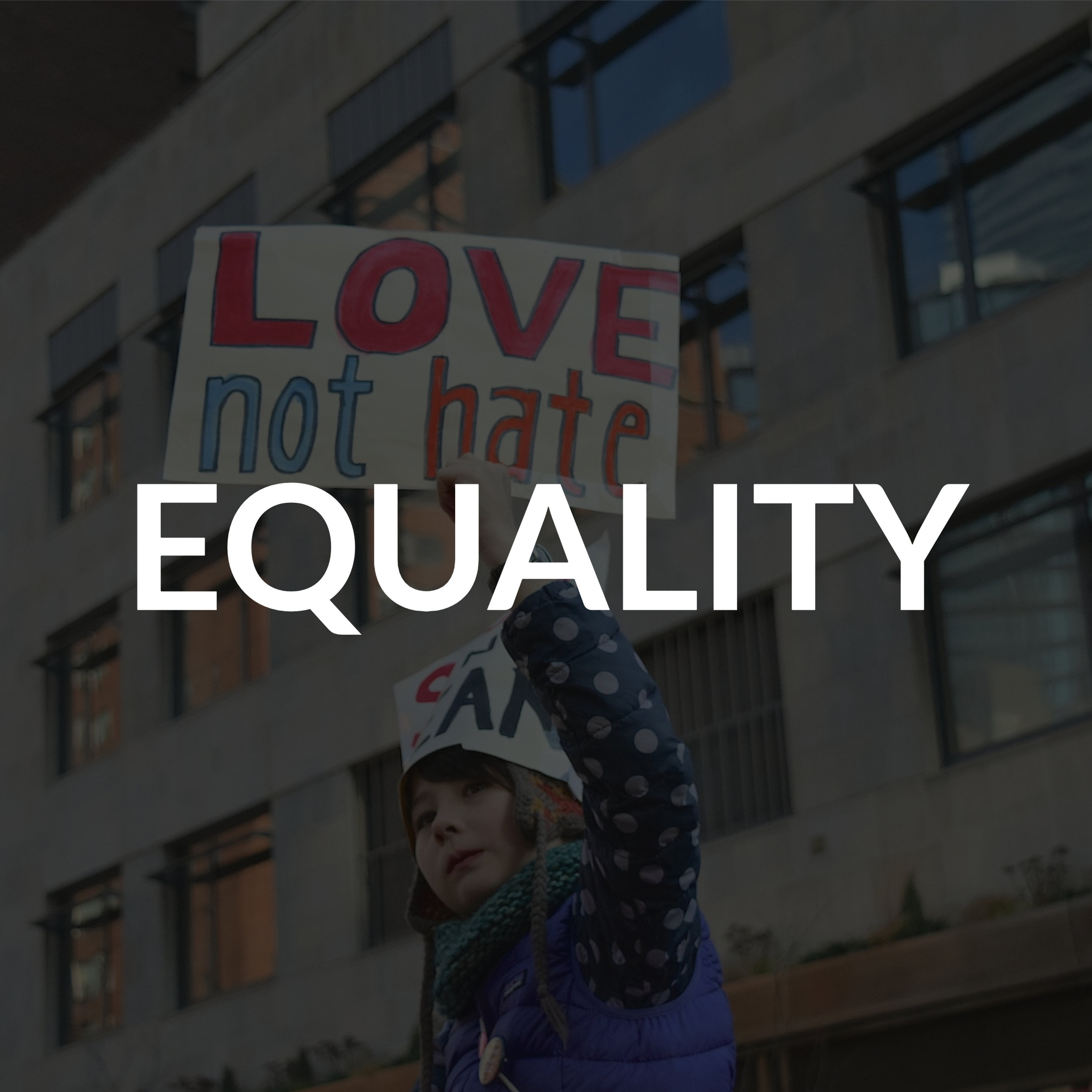 Like most of us, I believe in a government that treasures the principle that all are created equal, and that all should have equal access to the opportunities Utah provides. I support legislating equal pay for women, a statewide accommodation law that requires businesses not to discriminate on the grounds of race, gender, religion, or sexuality, and hate crimes legislation that will create stiff punishments for those who threaten the safety or livelihood of marginalized and minority populations.