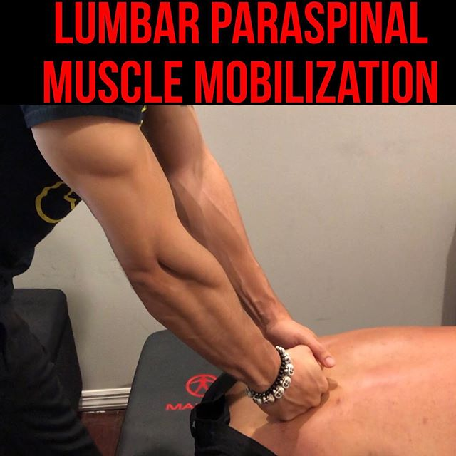 """Low Back Pain: Lumbar Paraspinal Muscle Mobilization with Seated Forward Bend ❗️ • • • This country has the highest incidence and prevalence of Low Back Pain recorded in history. We have evolved as Americans to be Tech-driven and seat-happy. Those are the reasons why, but we must also ask ourselves what are the structures (soft tissue, joint, bone) that are keeping us in this state of constant lower back tension. For soft tissue, it is predominantly coming from the lower lumbar paraspinal muscles. These muscles are extensors: extension creates joint compression, joint compression creates stiffness and pain. So how do we combat this? Start by performing this technique. Then start training your clients how the proper way to sit, stand, squat and deadlift with the appropriate muscles firing. Remember in the game of rehab: it's all about FIRST: inhibiting the """"bad"""" muscles, THEN: facilitating the """"good"""" muscles. Without the first step, you have no chance of achieving the appropriate muscle engagement and motor patterns that you desire. It's all a sequence. Miss a step and end up regressing. Take your time with sequencing your progression and watch the MAGIC HAPPEN. • • • Video 1: Explanation and Pre-Test  Video 2: Set-Up and Performance of Lumbar Paraspinal STM  Video 3: Performance of Lumbar Paraspinal STM with Respiration Video 4: Performance of Lumbar Paraspinal STM with active ROM  Video 5: Post- test"""