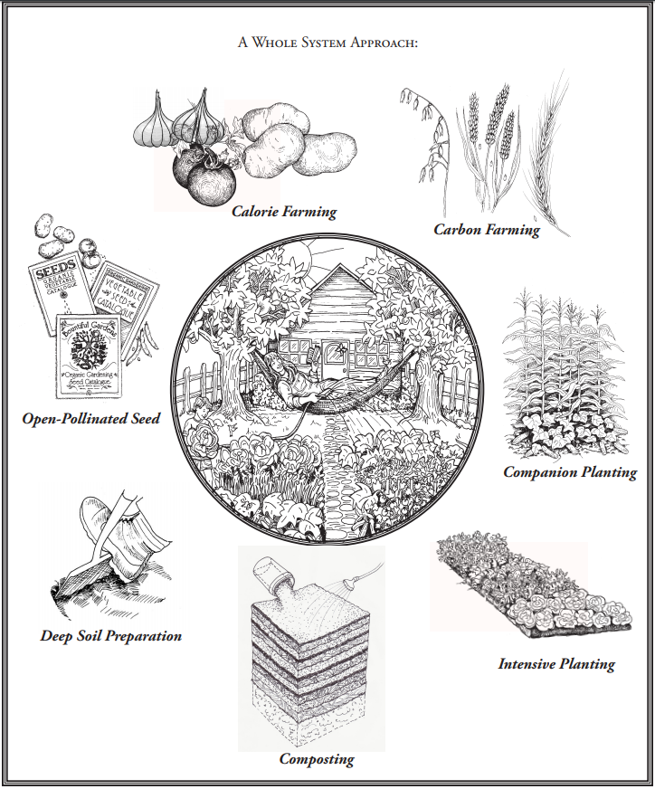 The 8 Principals of Sustainable Food Production - GROW BIOINTENSIVE Mini-Farming uses 8 core principals, which are the key to truly sustainable food raising.  By using each principal together, we can grow enough carbon for the compost pile, produce enough calories to feed ourselves, and create a micro-climate in our garden that encourages biodiversity and vitality.  If any single principal is overlooked, the system cannot be truly sustainable.