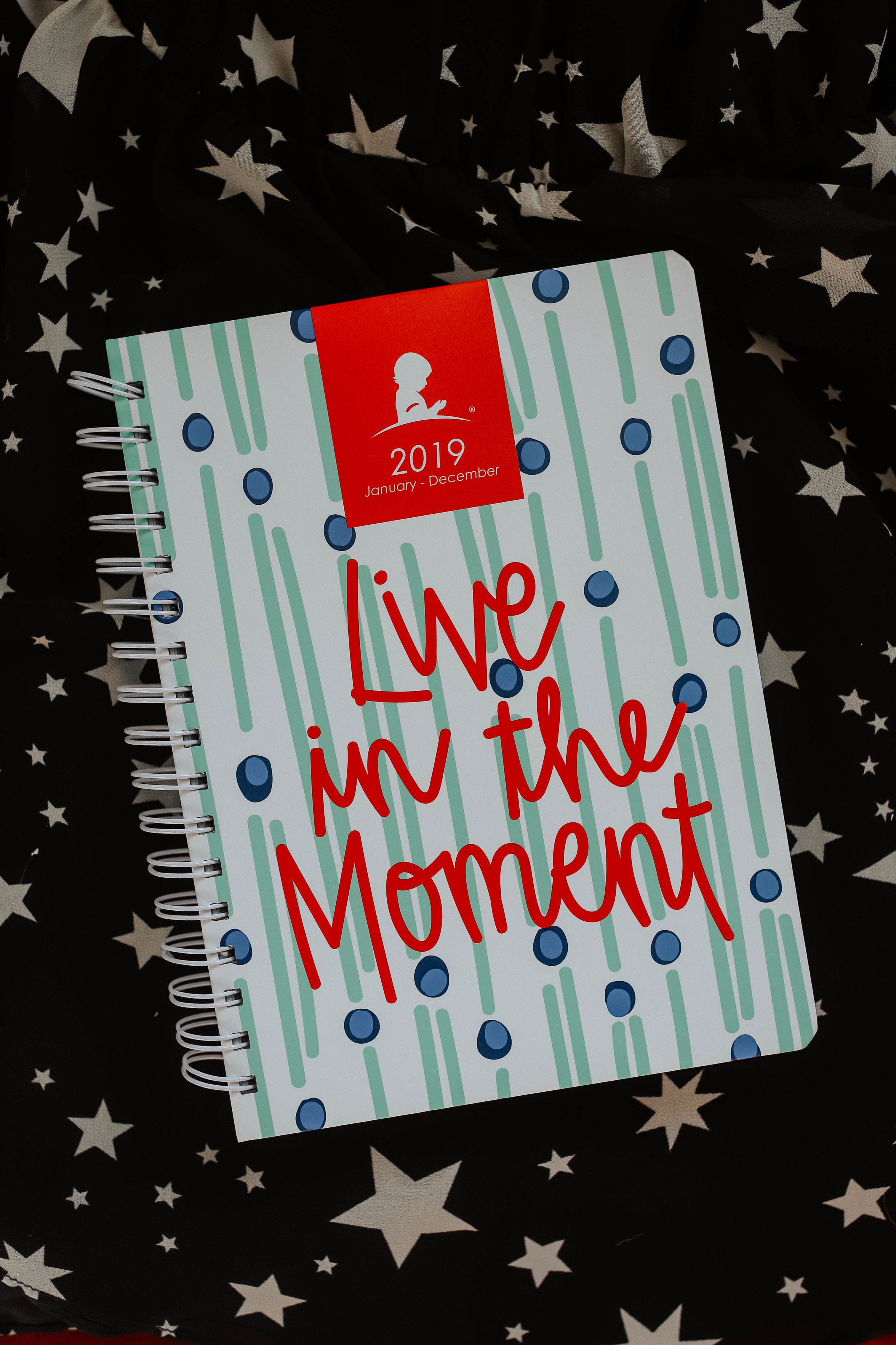 - and because it's a new year, i also got one of their planners and i am so excited to use it because while resolutions are great and important, it's what you do every day that matters. and i think this planner will be more impactful than one that says a generic quote about being busy, ya know?