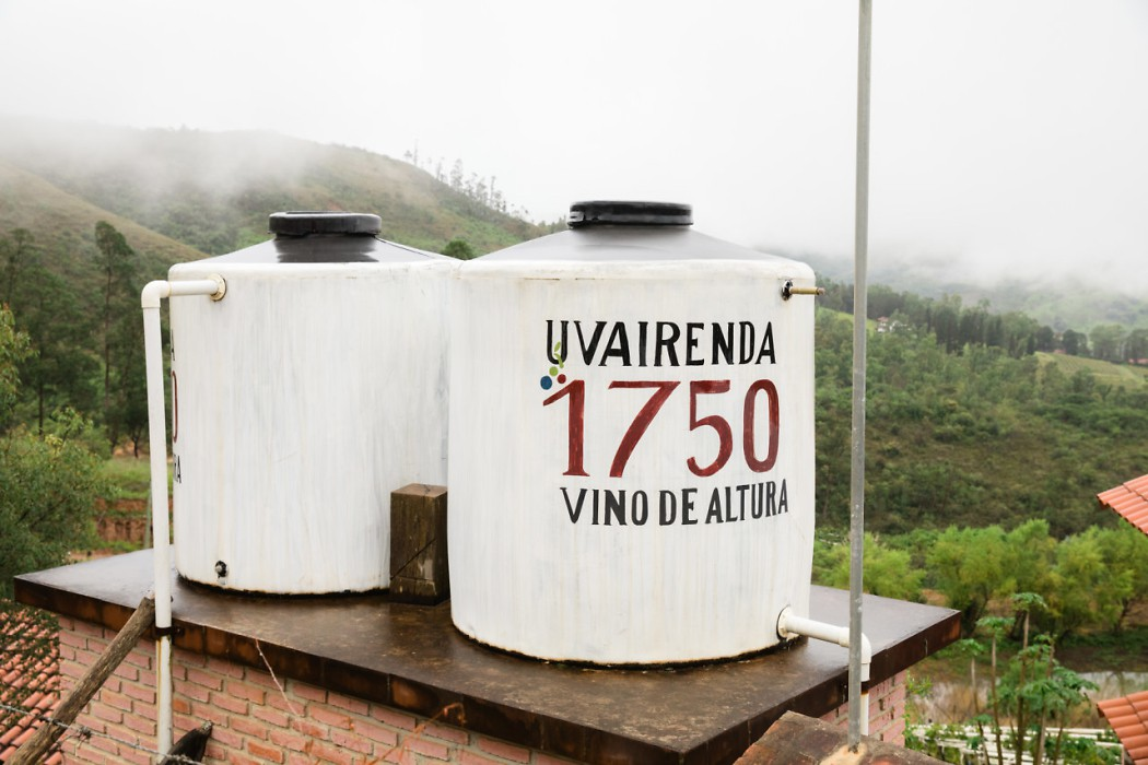 The Uvairenda vineyard installed a rain collection system to take advantage of rainy summer days. Utilizing these storage tanks and a pond on the property, they rarely need to pump in water from outside sources. Photo: Alexandra Whitney. @alexandrawhitney