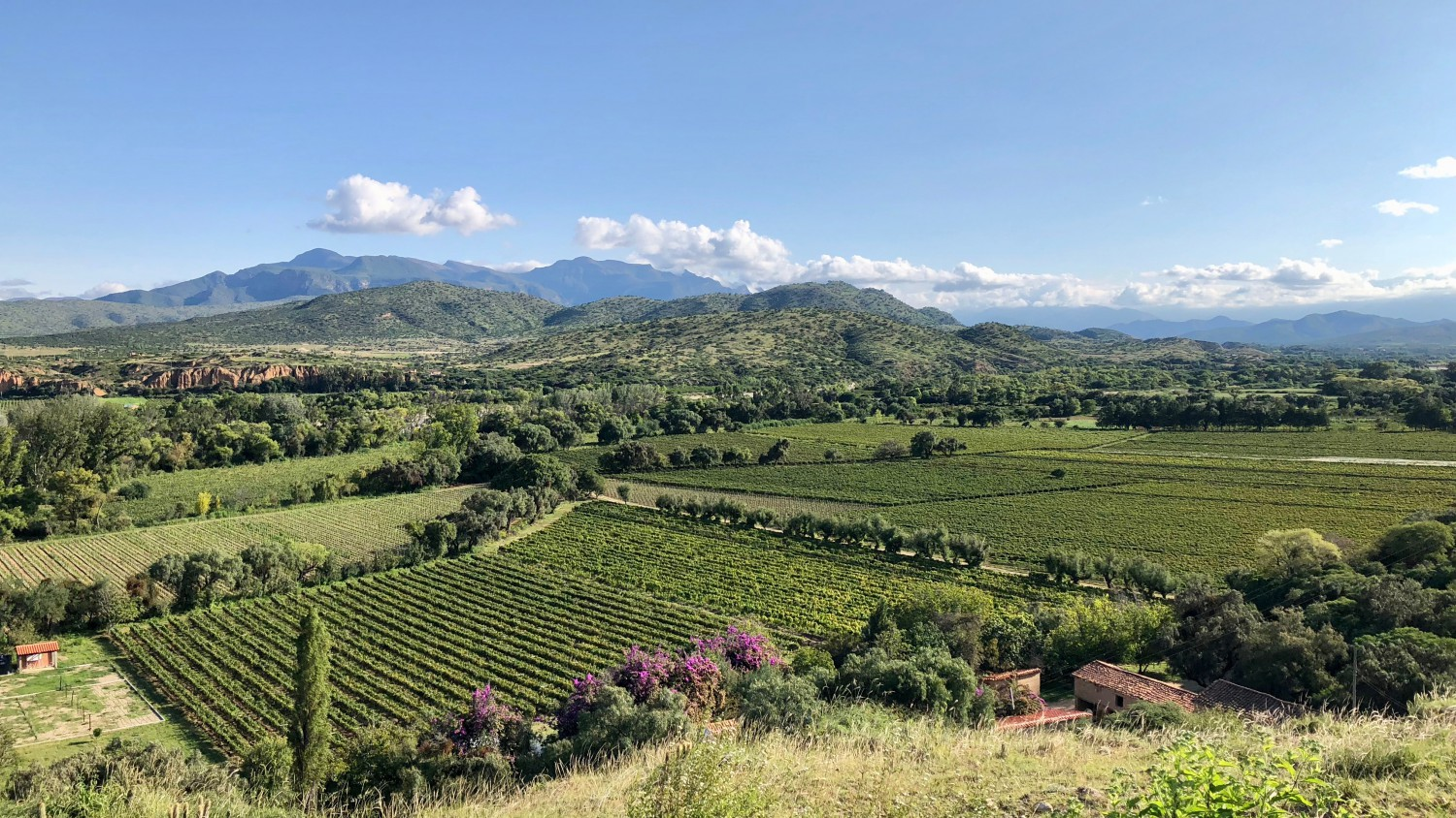 The semi-dessert climate of Tarija is beautiful, but challenging due to the high levels of UV exposure at altitudes of over 6,000 feet.