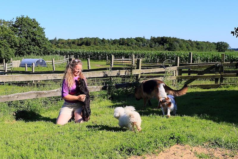 Hundepension - Kennel Roager - fællesleg hunde og Anita i lille have.JPG