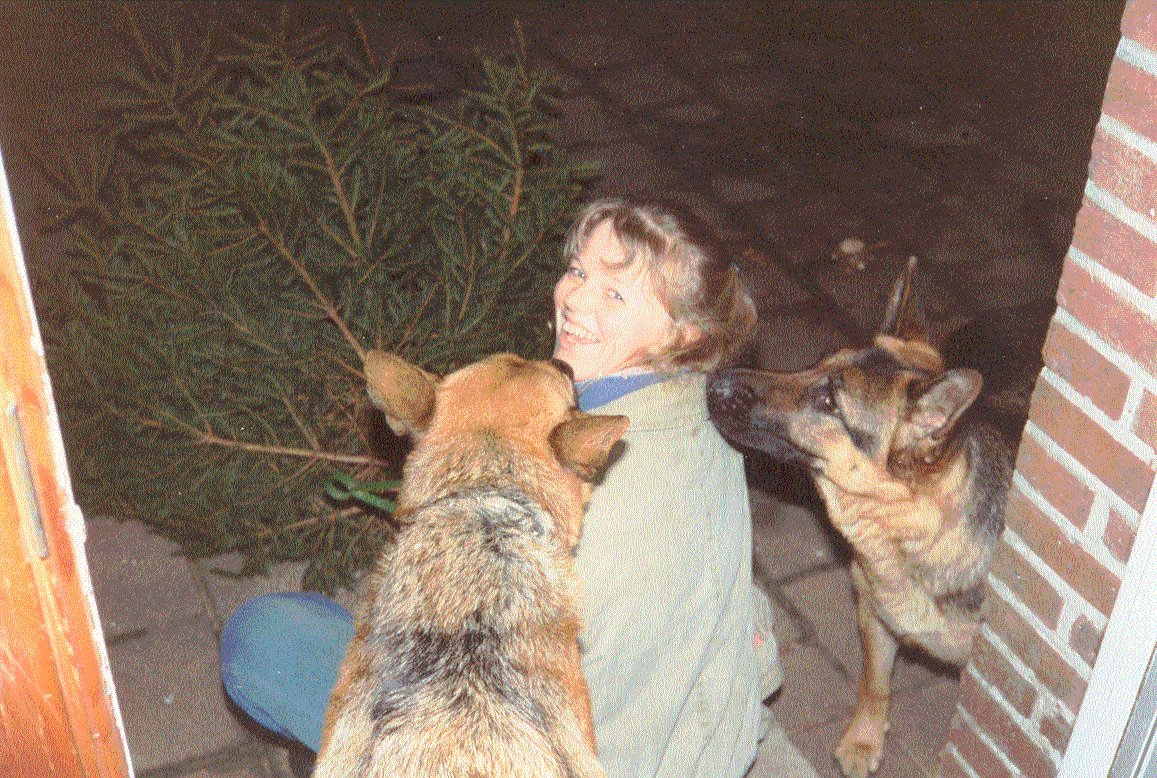 Anita m schæfer tæver og juletræ.jpg