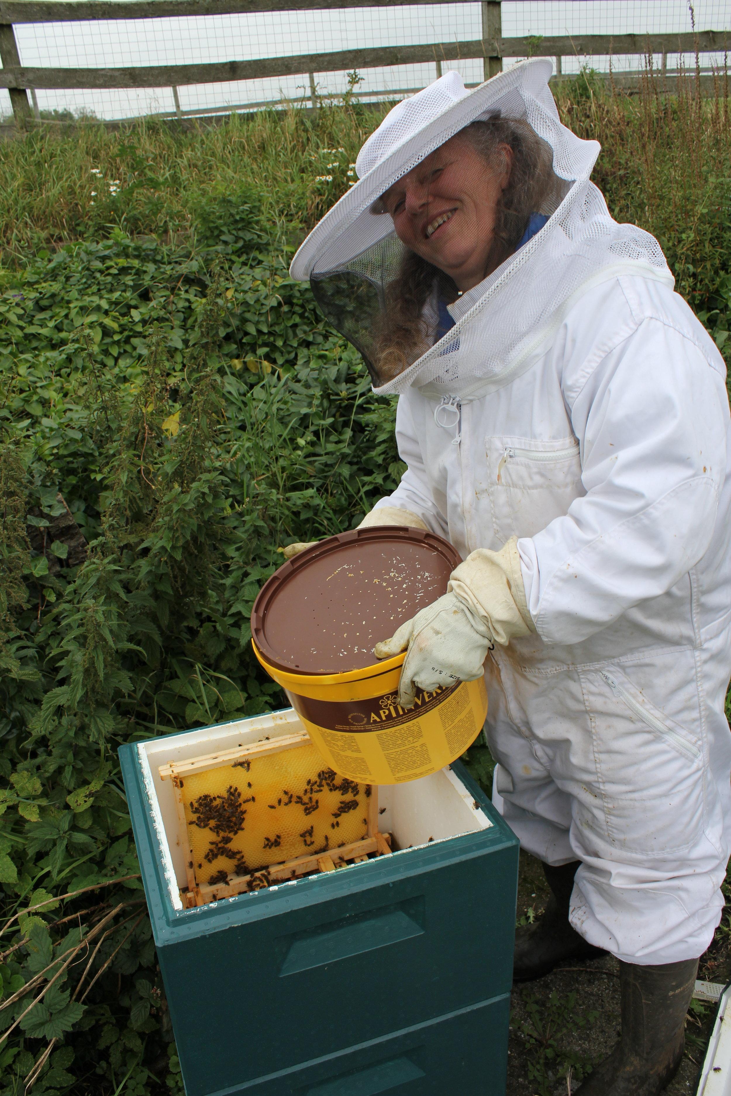 Vinterfodring i opstablingsstade. Erstatning til bierne for årets honning.