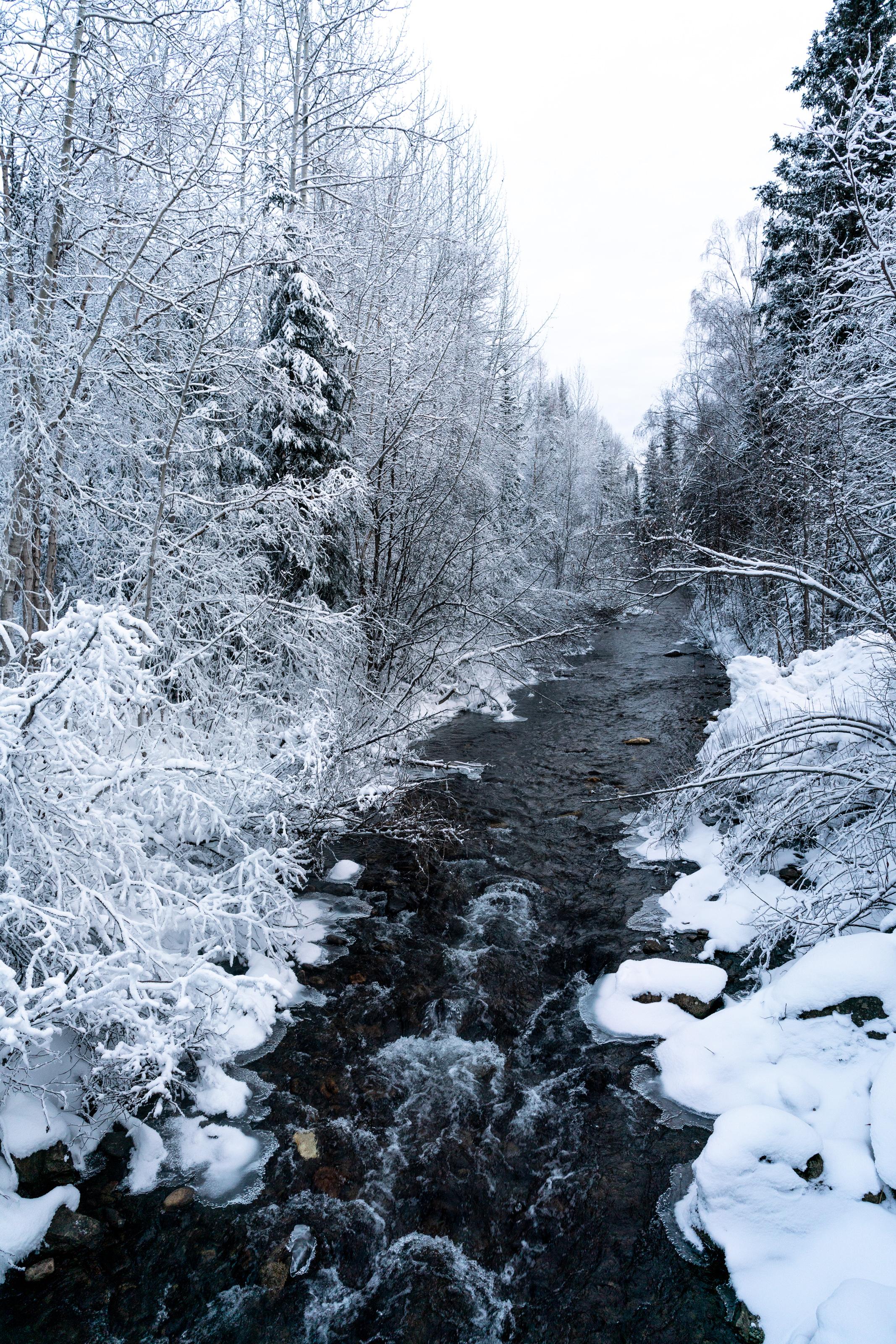 2018-12-06 Alaska McKay_20181206_AlaskaMcKay_T_A02295.jpg