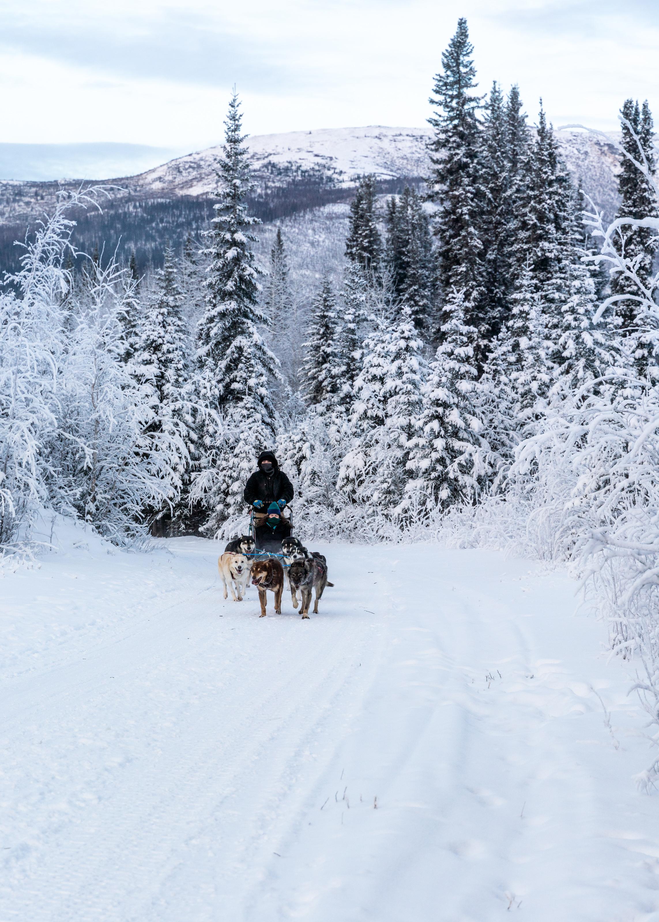 2018-12-06 Alaska McKay_20181206_AlaskaMcKay_T_A01926.jpg