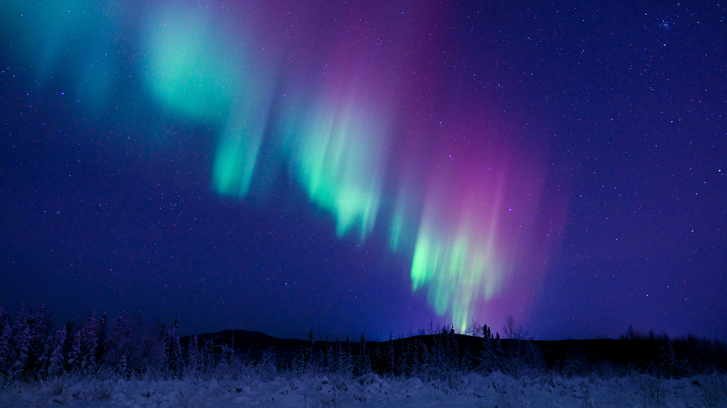 2016-12-04 Alaska N Lights_PC062153.jpg