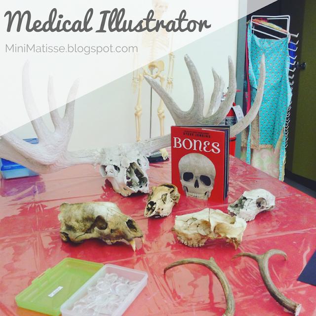 MedicalIllustrator.jpg
