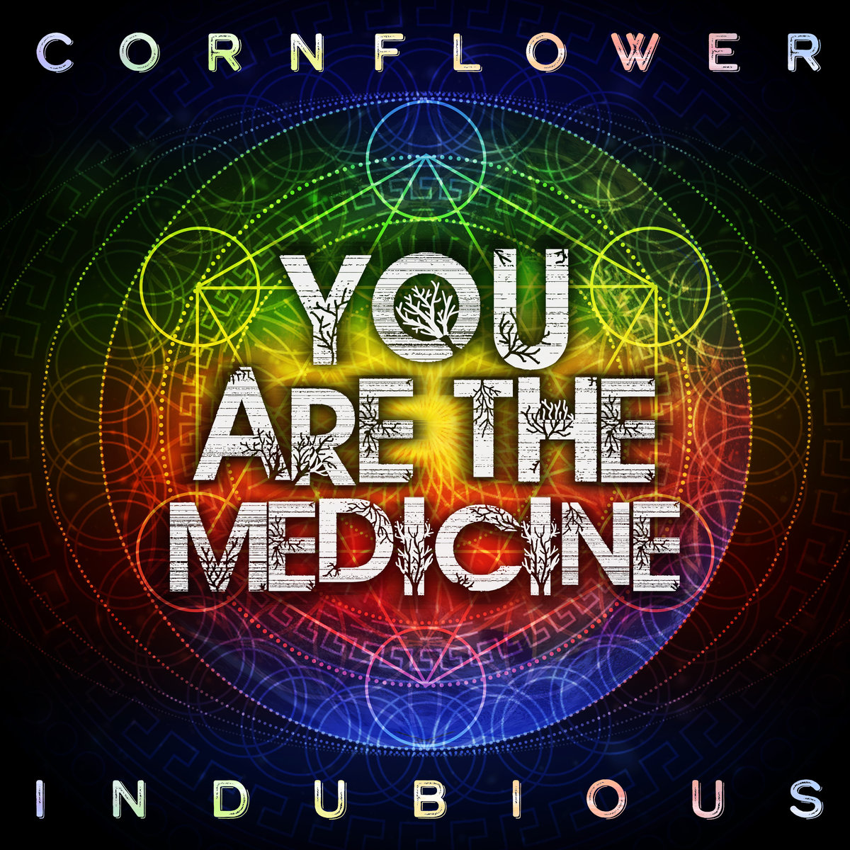 You Are The Medicine [Single]