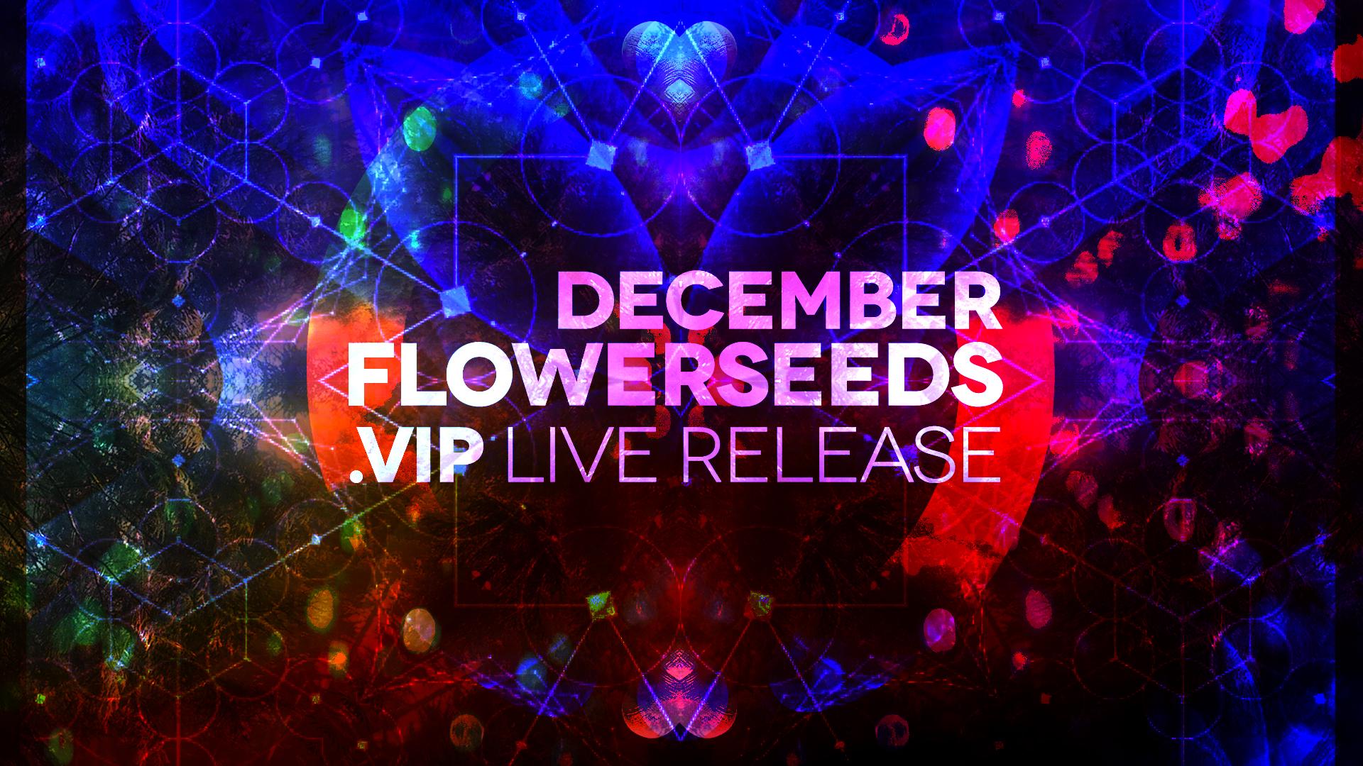 20181207-VIP-Dec.jpg