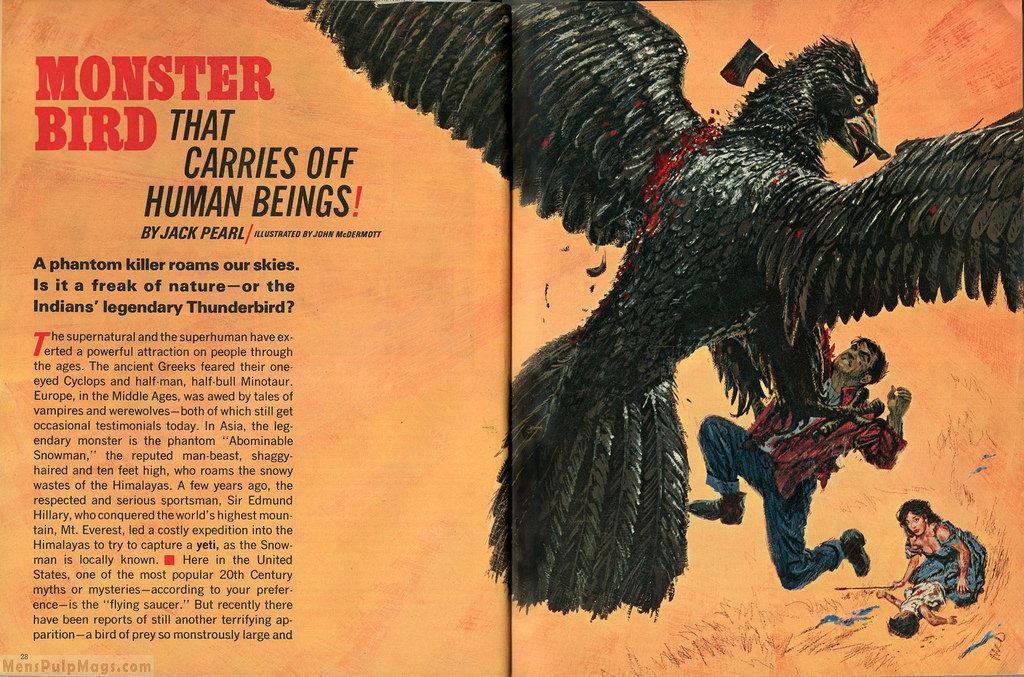 1970's Men's Pulp Magazine Thunderbird Story