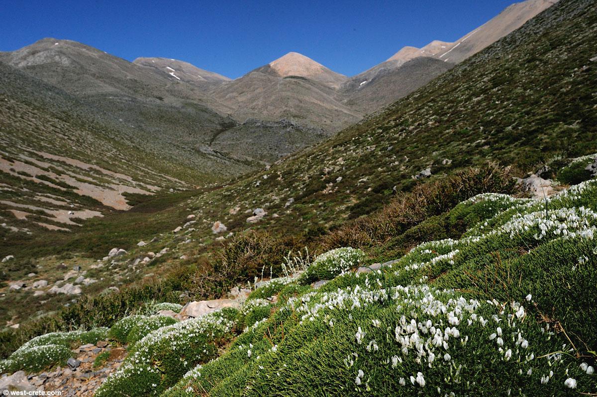 crete mountains.jpg