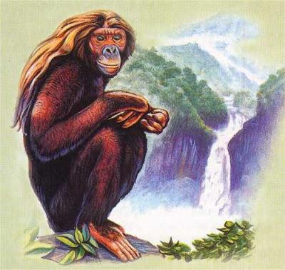 OrangPendek (1).jpg