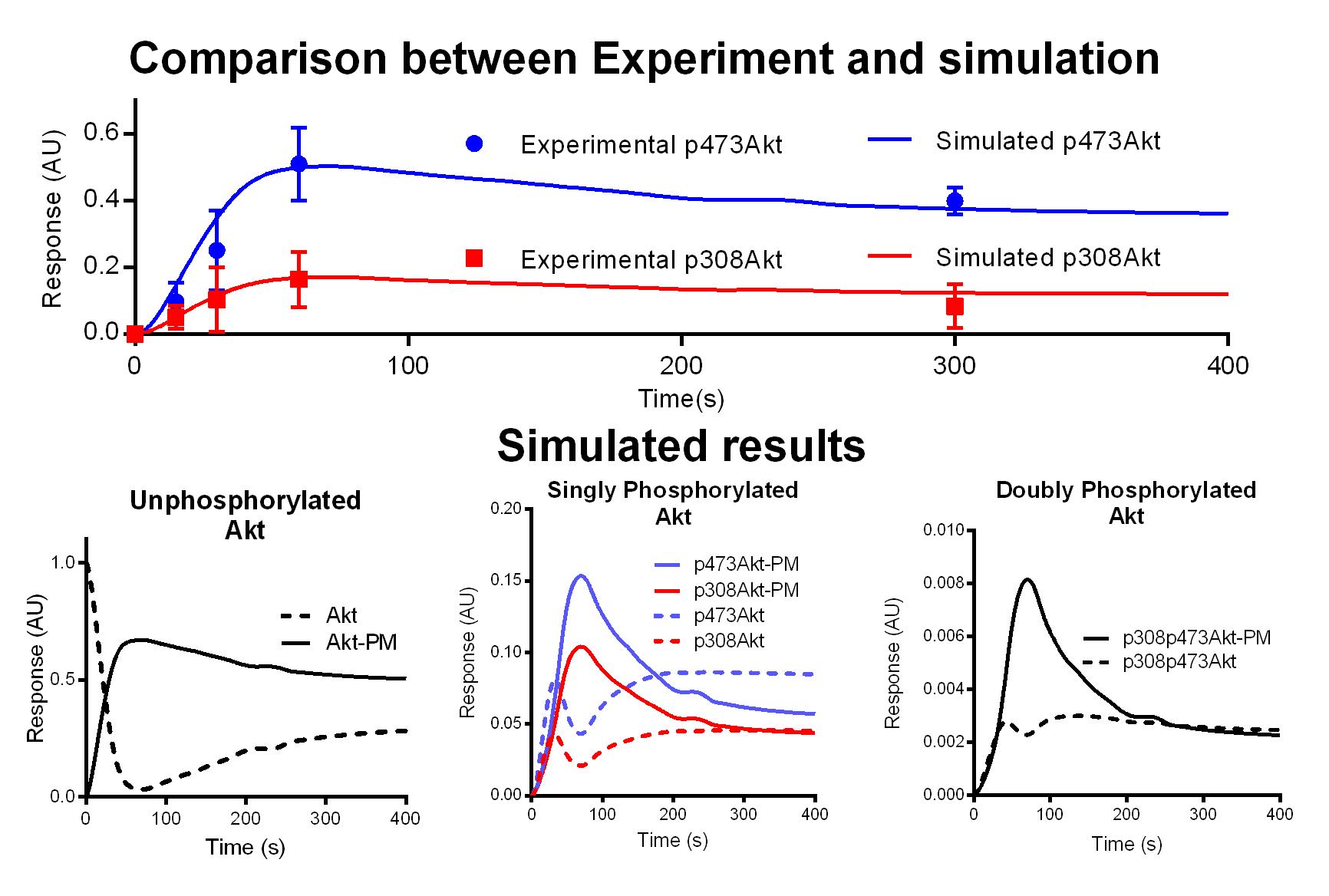 Figure_2_Dynamic_Modelling.png