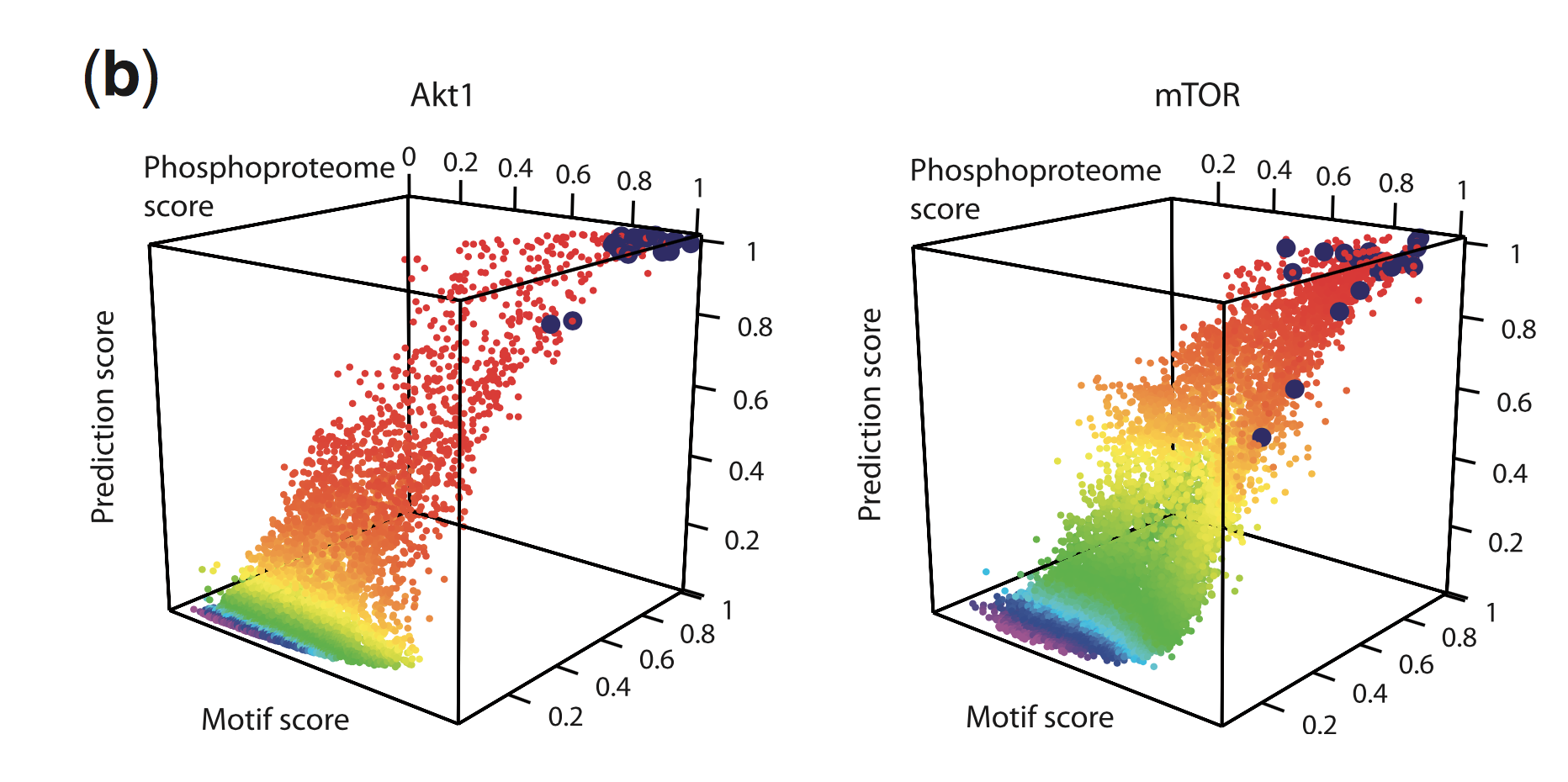 Prediction scores from a model predicting Akt and mTor substrates. Each point corresponds to a phosphorylation site and is rainbow colored by the value of the prediction score (Yang et al., Bioinformatics, 2015).