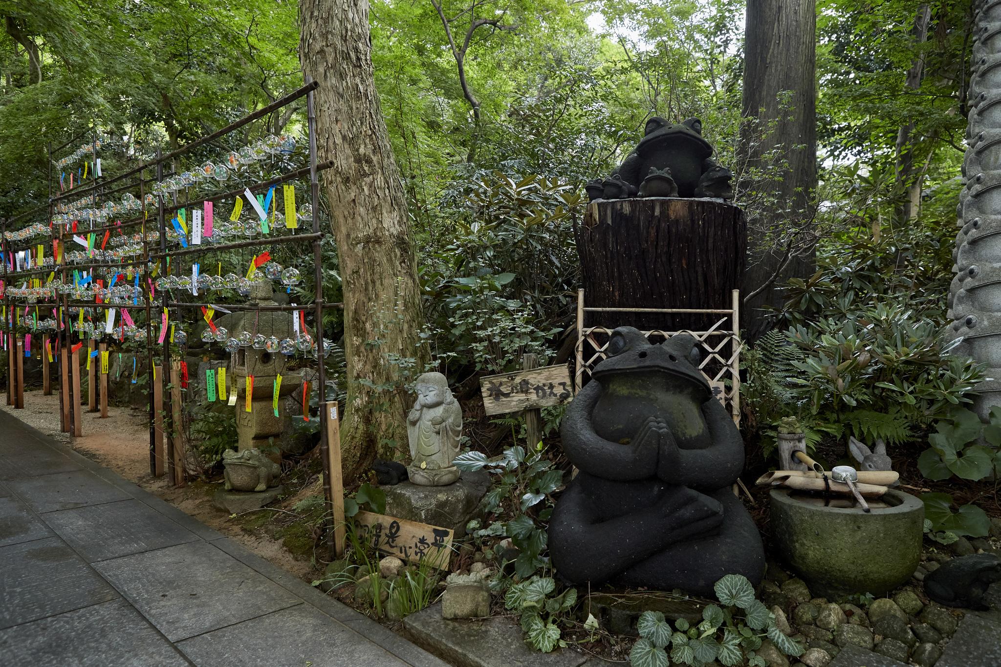 Kaerudera Temple (Frog / Nyoirinji Temple)