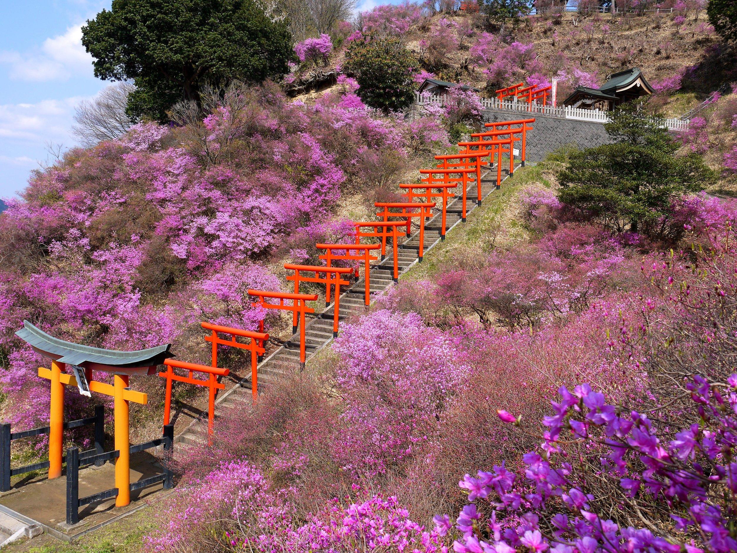 Shiizaki-Inari Shrine, Kyoto