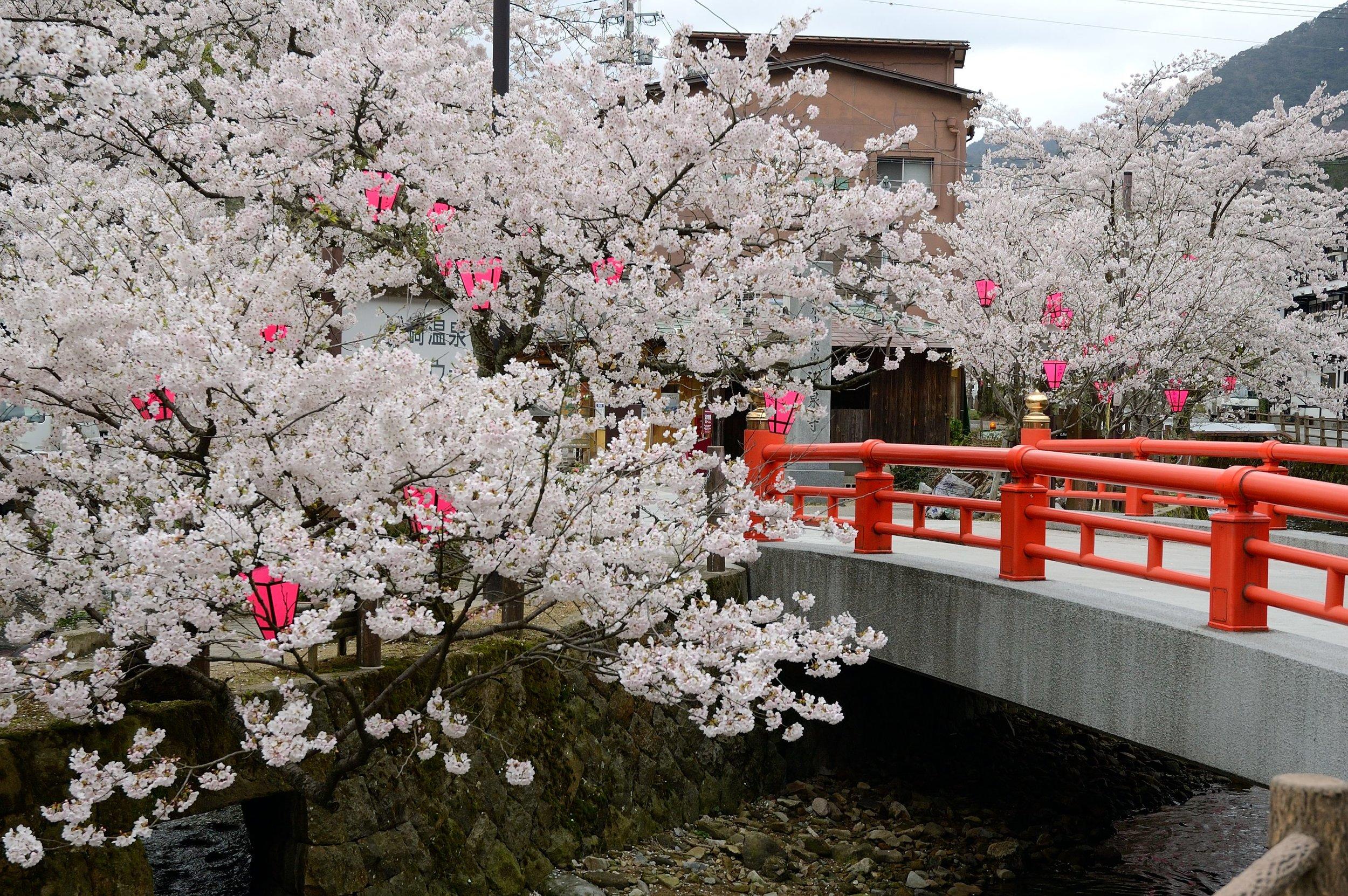 Kinosaki Hot Spring, Hyogo