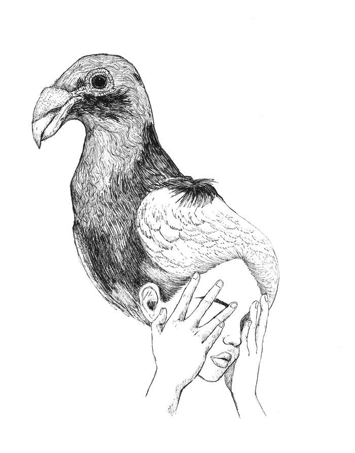 Darwin's Pigeons pt 1 - Copic Pen & Pental Ink Brush, 2017