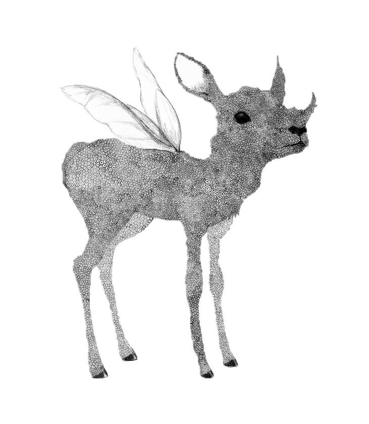 Oh Deer - Graphite Pencil, 2012