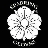 Sparring Gloves.jpg