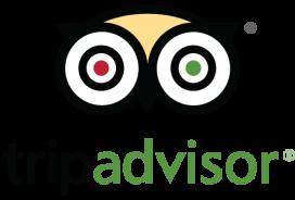 Tripadvisor-logo-3.png