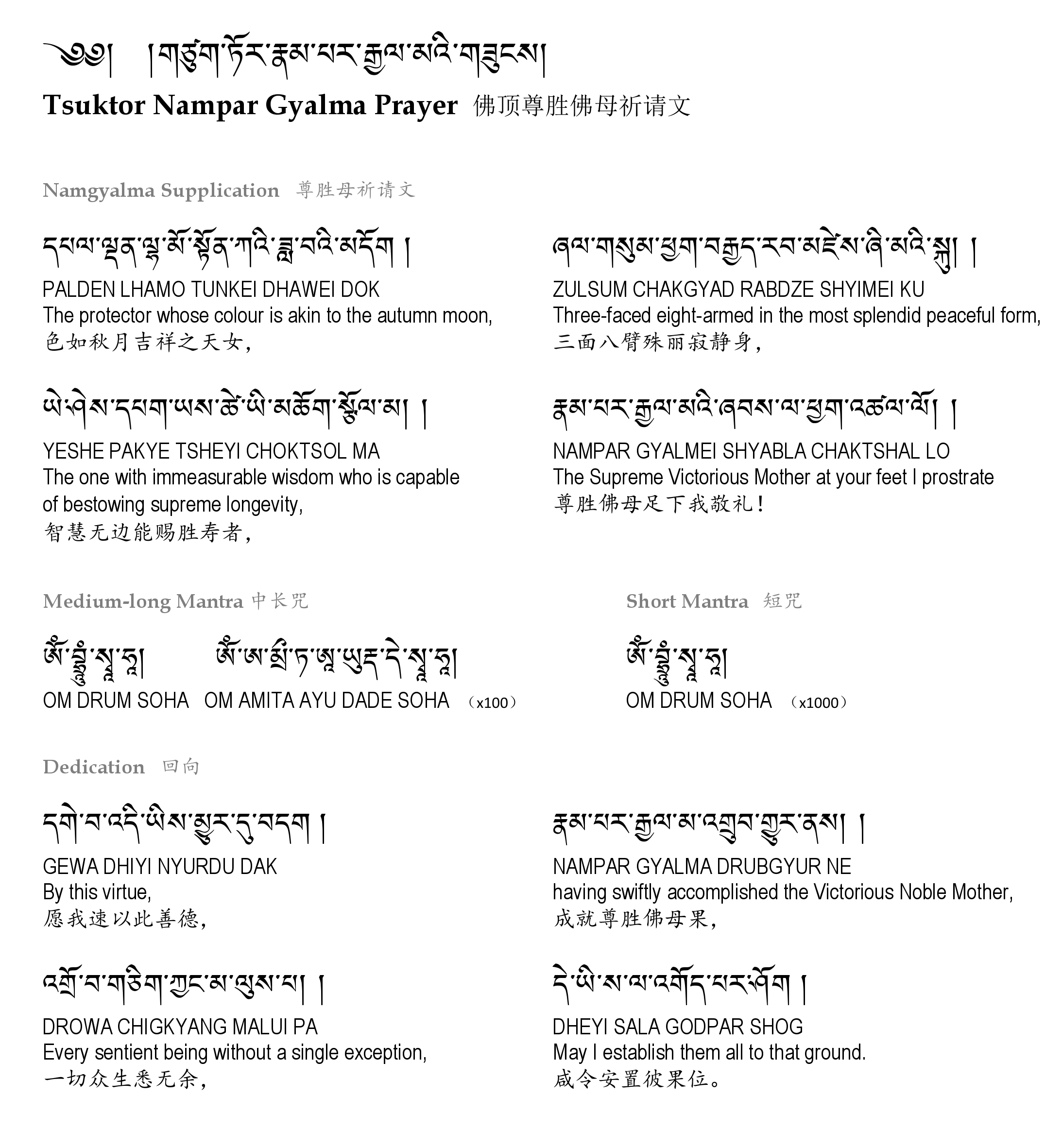 The Concise Prayer of Namgyalma by Choegon Rinpoche