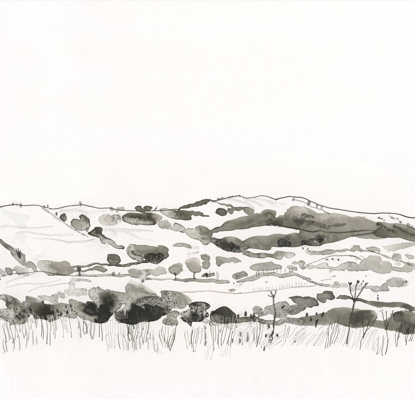 Dorset hills
