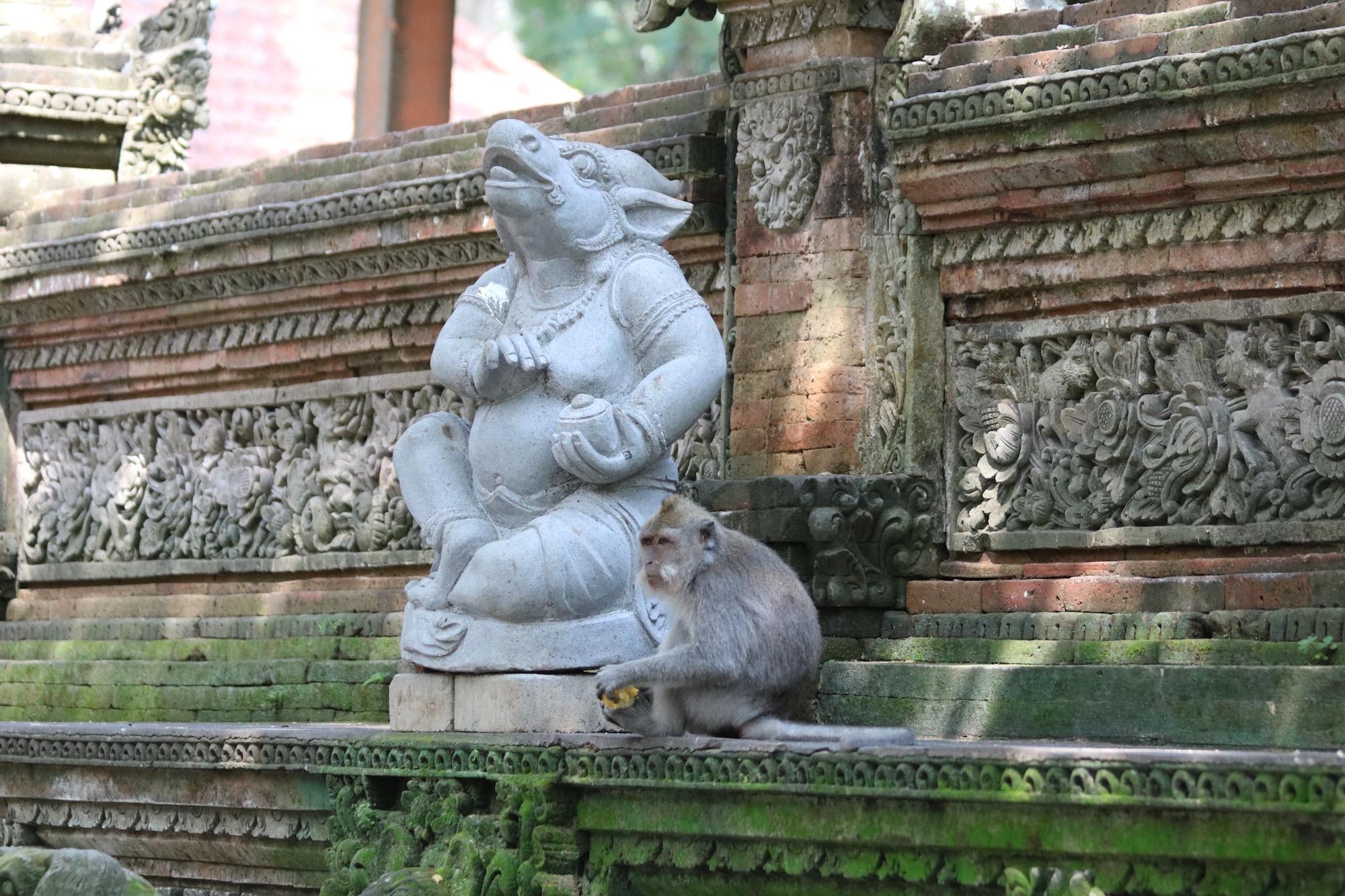 monkey-forest-temple.jpg
