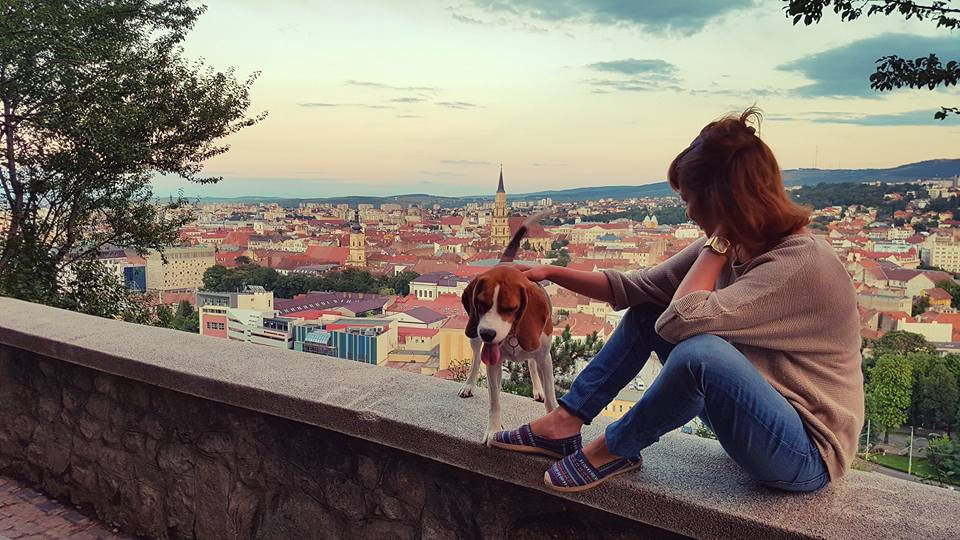 The travel addict