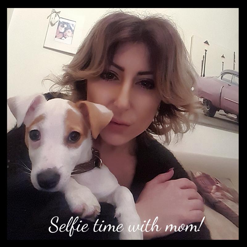 jack-russell-selfie.jpg