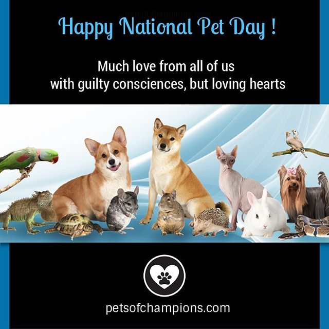 To all mommies and daddies, we love you to the moon and back! #NationalPetDay #PetsOfChampions #pets #instapets #petstagram #petsofinstagram