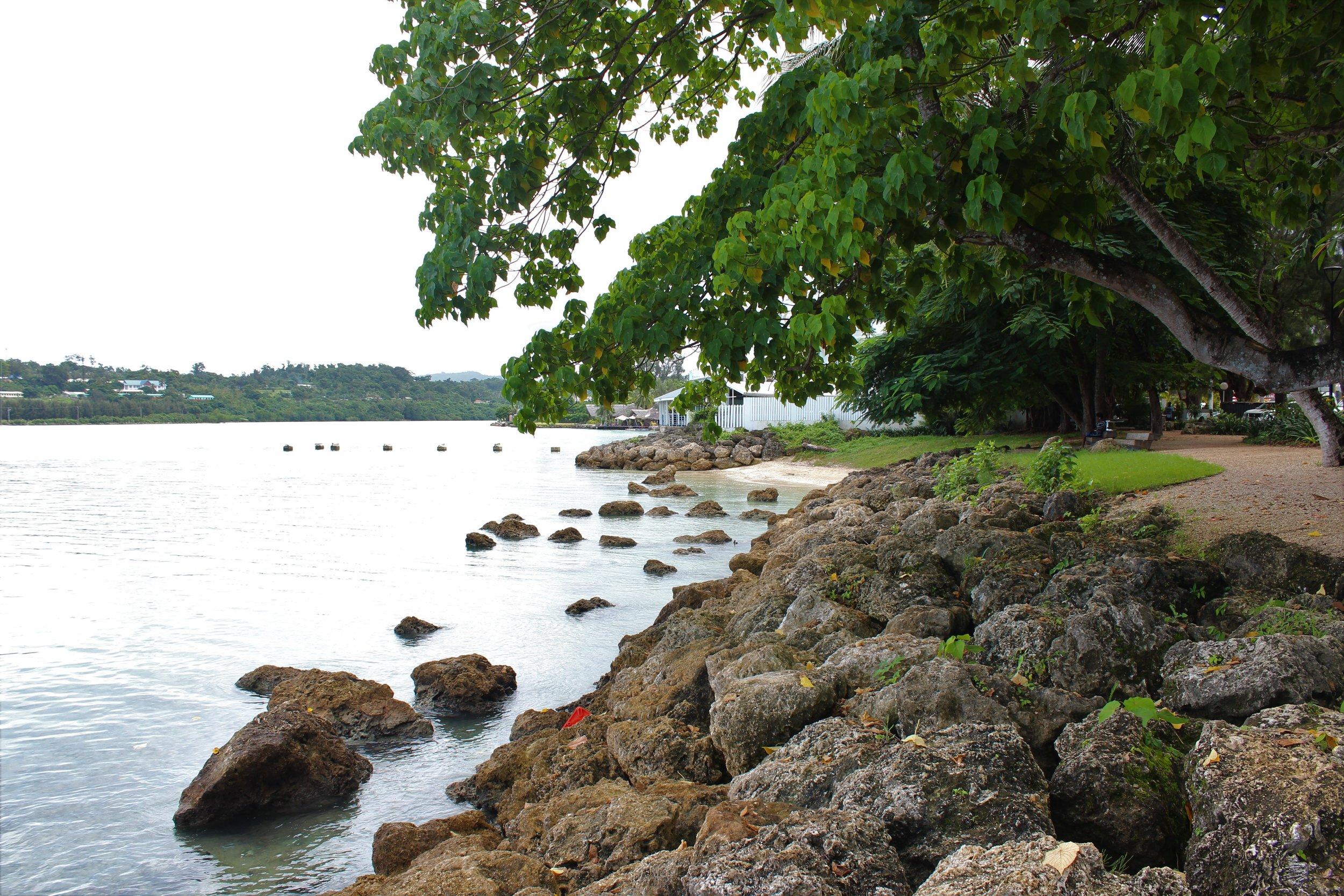 Natural Defence Vanuatu.JPG