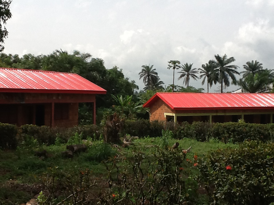 New Roofs - We now have funds to finish the renovation programme at Amaudo Itumbauzo, with just 4 roofs left to complete. We are now fundraising to replace the 16 roofs at our long term care centre, Amaudo Ntalakwu. Each costs £1.5K so in total we need to raise £24K to complete renovations.Updated Feb 2018