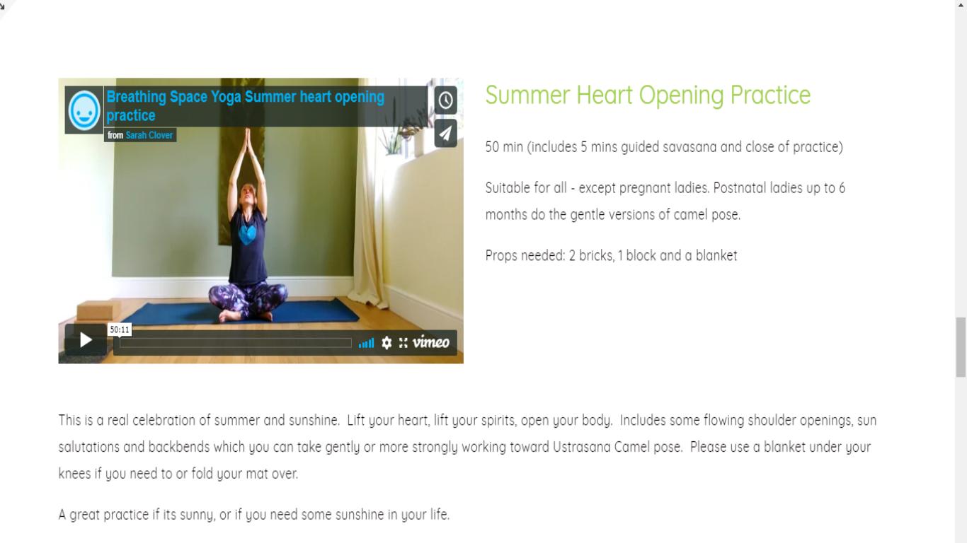 summer online snippet.png