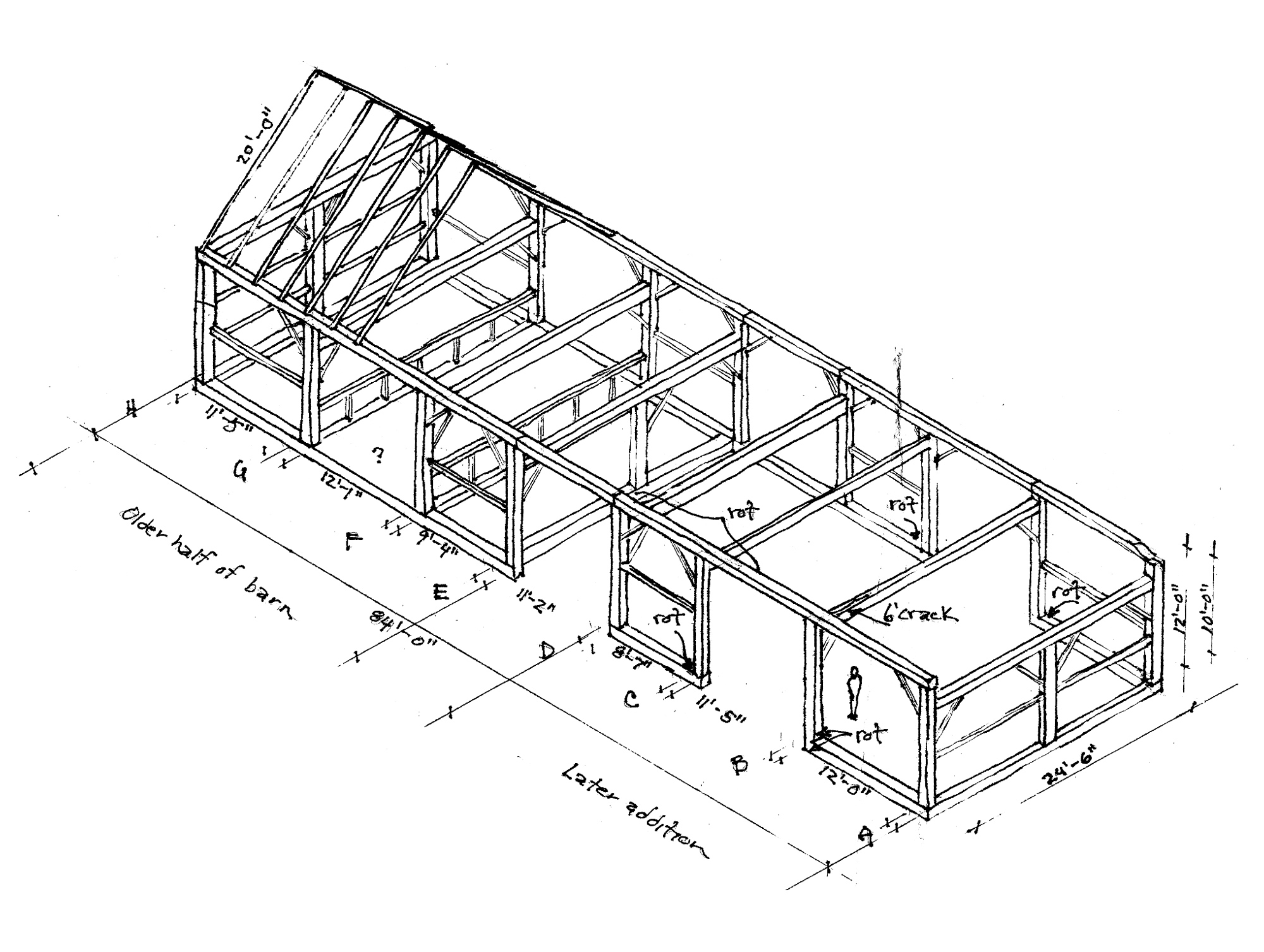 nfw-woodworking-illo.jpg