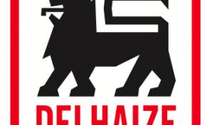 delhaize-291x176.png