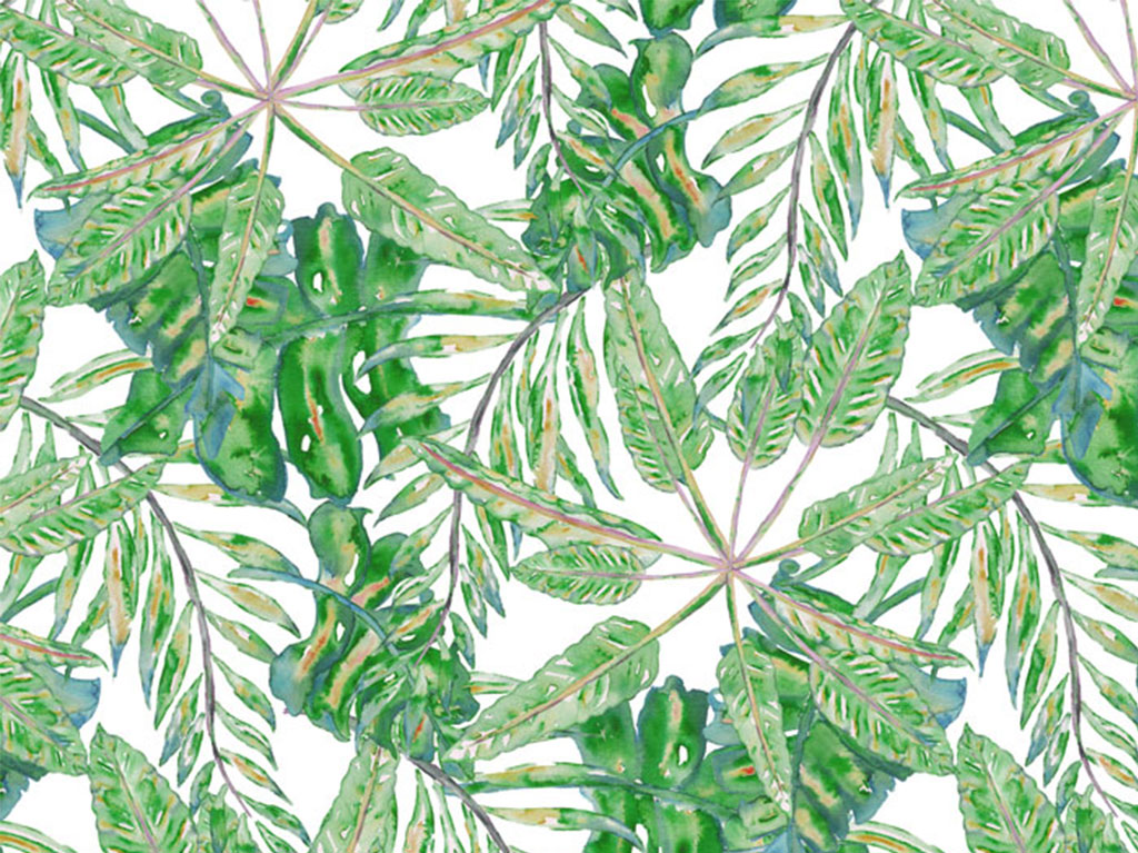 Tropical PatternKit - Painted elements of