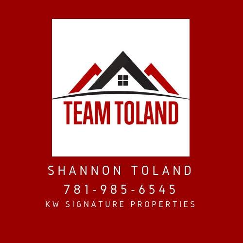 TeamToland.jpg