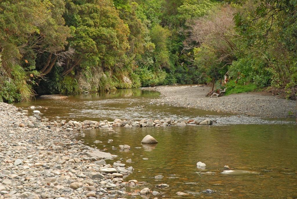 sf-river-2.jpg