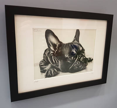 crayford-picture-framing-french-bulldog-print-artwork-framed.jpg