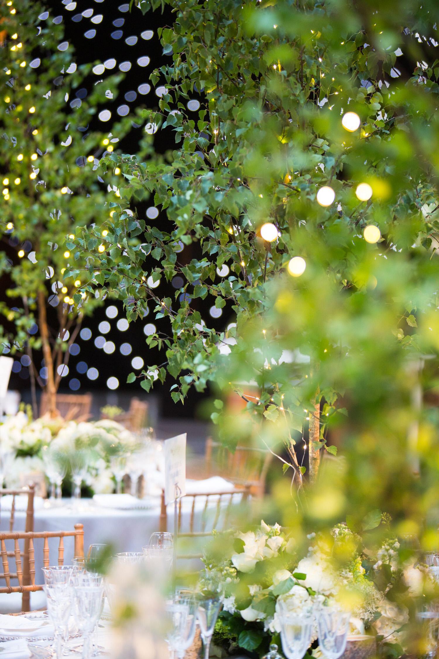Littleton-Rose-Natural-History-Museum-London-Wedding-Planners-Trees.jpg
