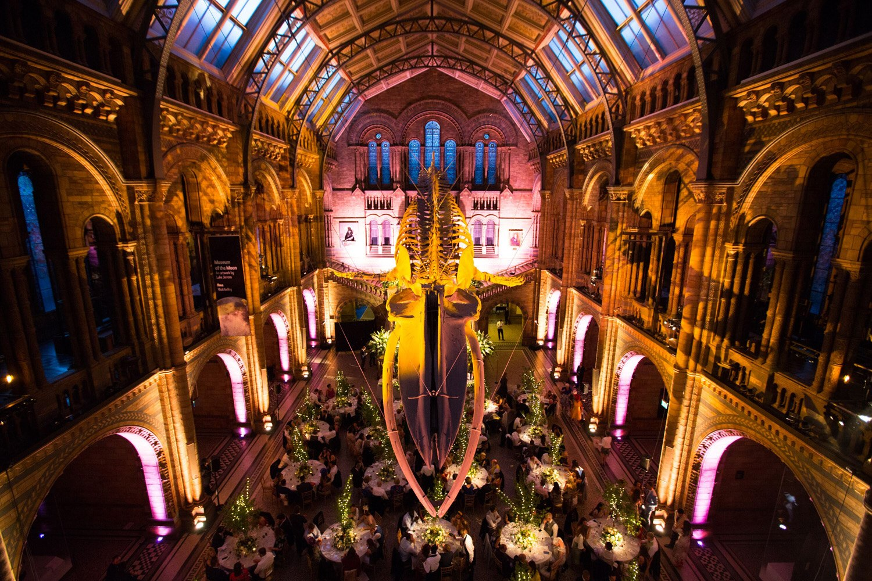 Littleton-Rose-Natural-History-Museum-London-Wedding-Planners-Hintze-Hall.jpg