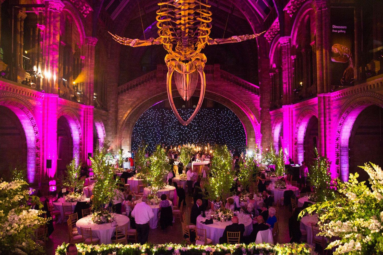 Littleton-Rose-Natural-History-Museum-London-Wedding-Planners-Hintze-Hall-Lighting.jpg